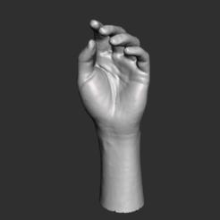 Autodesk Meshmixer - Tattoo_Machine_Ink_Pen_INKED.stl 22_09_2020 11_57_13 a. m. (2).png Download STL file 3d Hand Modeling • Design to 3D print, armandotrujillo