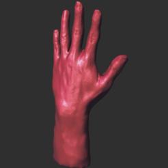 Autodesk Meshmixer - V3 modificada.mix 06_10_2020 10_48_55 p. m. (2).png Download STL file 3d Hand • 3D printing model, armandotrujillo