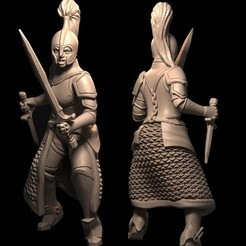 warrior.jpg Download STL file Female Warrior with Swords • 3D print template, FITE