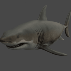 Render1.png Download free OBJ file Great White Shark • 3D printer model, raiks