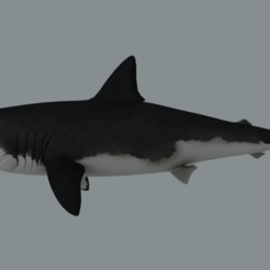 render1.png Download free OBJ file Megalodon (Shark) • 3D printer object, raiks