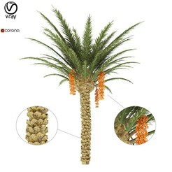 palm tree_preview 01.jpg Download STL file PALM TREE • Template to 3D print, aliqadriart