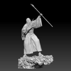 2.jpg Télécharger fichier STL Gandalf le Gris • Modèle à imprimer en 3D, LiamMorgan