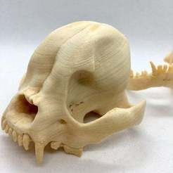 skull1.jpg Download free STL file THE FRENCHIE SKULL WITH WOOD PLA • 3D print template, PoloniusStudios