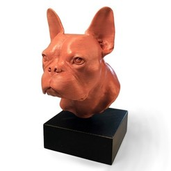 frenchie bust quarter view500px.jpg Download STL file The Frenchie Bust  |  Foundation Series • 3D printer model, PoloniusStudios