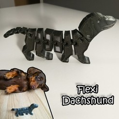 Dachshund.jpg Download STL file Flexi Dachshund • 3D print template, tothmiki91