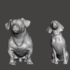 IMG_20201009_090215_538.jpg Download free STL file Dog collection • 3D printing model, Shayuki