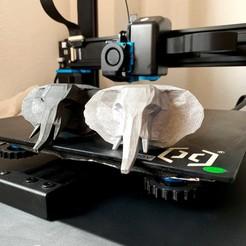 Elefante molde 2.JPG Télécharger fichier STL gratuit éléphant à faible poly pour les moules • Plan pour impression 3D, Bisel3D