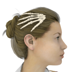 Screenshot_1.png Download STL file Skeleton hair clips • 3D print model, Anonymous3Dnumerati