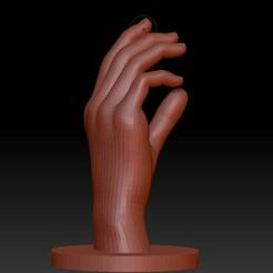 Screenshot_1.jpg Download STL file Human hand • 3D printable design, alexgundru