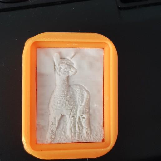 20201015_090519.jpg Télécharger fichier STL Litokey ( Porte-clés ) • Design à imprimer en 3D, Bandy88