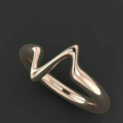 451.jpg Download 3DS file Pulse Ring • 3D printable template, Neel6462