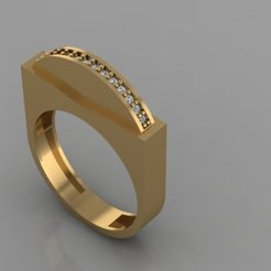 677.jpg Download 3DS file Coin in Ring • 3D printing template, Neel6462