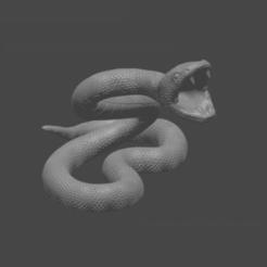strksnk.png Download free STL file Striking Snake • 3D printable template, sludgel