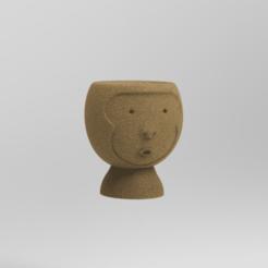 KeyShot 9.3 Demo  - untitled.bip  - 64 bit 27_12_2020 0_06_20.png Télécharger fichier STL pot de singe • Modèle imprimable en 3D, ezequielromero46