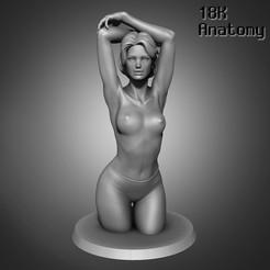 resize-01-1.jpg Download STL file 18K Anatomy - Woman • Model to 3D print, 18k_Anatomy