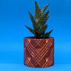"florence01.jpg Download free STL file Succulent Plant Pot / Planter ""Florence"" • 3D printable model, thudbuzz"