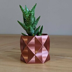 "arnold003.jpg Download free STL file Succulent Plant Pot / Planter ""Arnold"" • 3D printing object, thudbuzz"