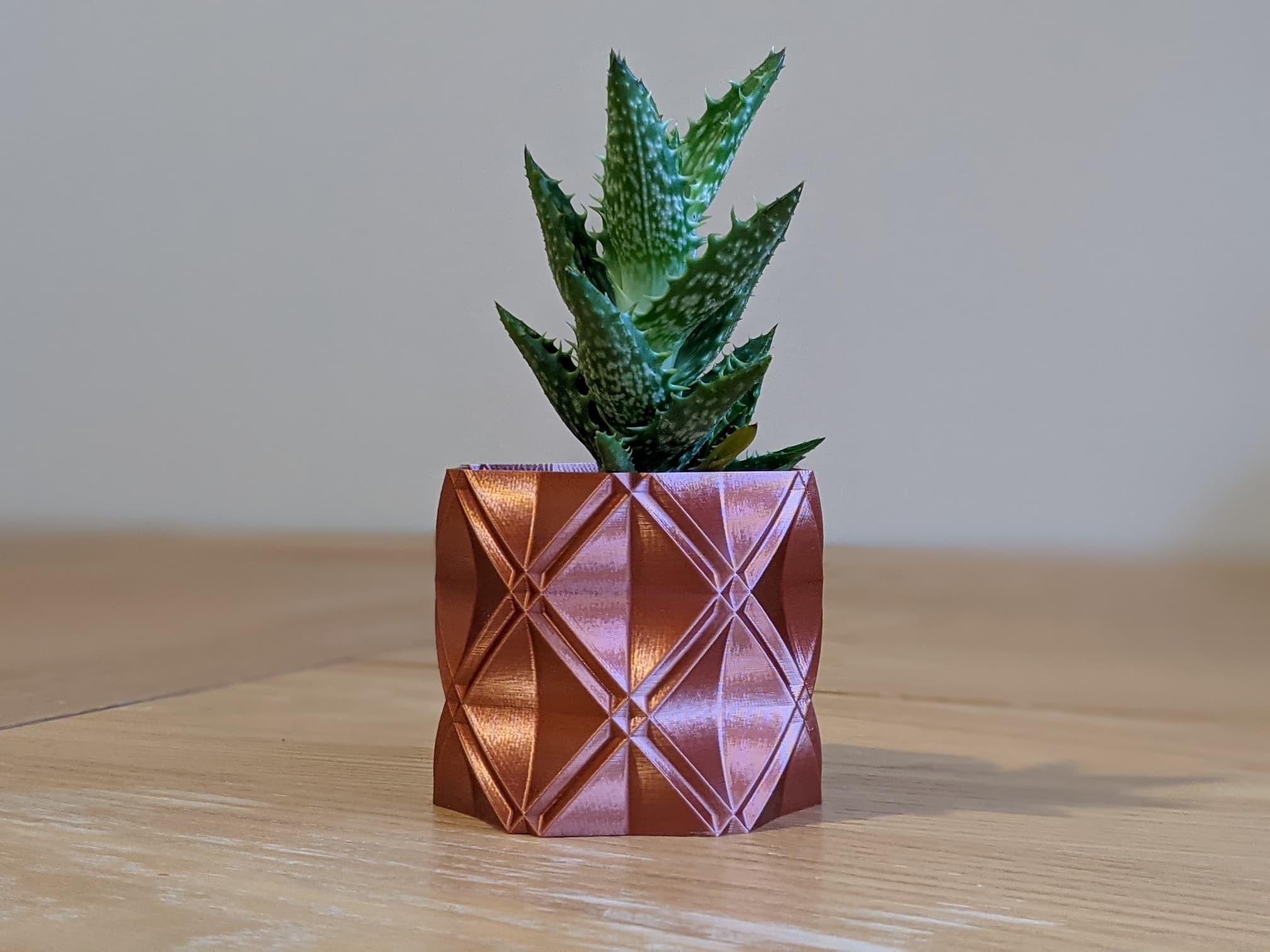 "barry01.jpg Download free STL file Succulent Plant Pot / Planter ""Barry"" • 3D printer model, thudbuzz"