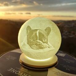 thumbnail_1610895701170.jpg Download STL file French bull dog moon lamp • 3D printable object, mgarciabart