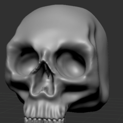 Skullpic1.PNG Download free STL file Human Skulls Pack • 3D print template, DragonFodderGaming