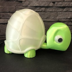 IMG_5826.JPG Download STL file Turtle Lamp Nightlight Design • Template to 3D print, CamoDeco3D