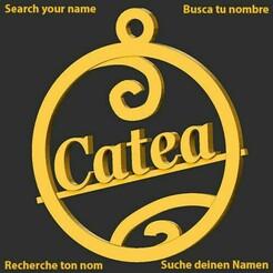 Catea.jpg Download STL file Catea • 3D printable object, merry3d
