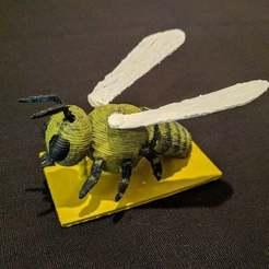 IMG_20170409_180640.jpg Télécharger fichier STL gratuit Bee • Objet pour impression 3D, MintyFries