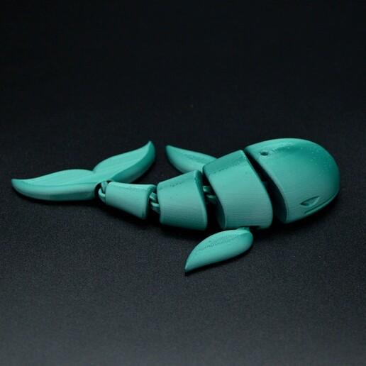 DSC_7619.JPG Download STL file Flexi whale • 3D print design, Hom_3D_lab