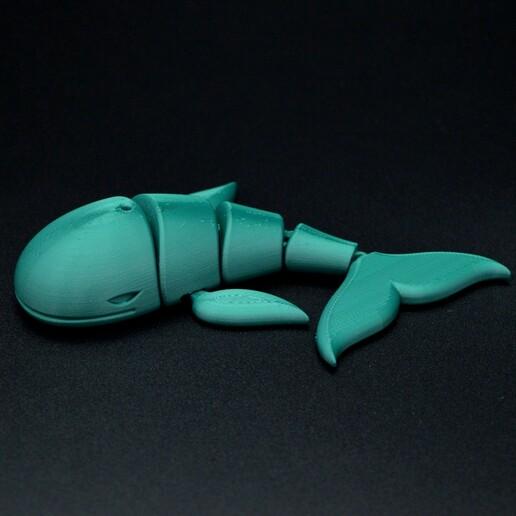 DSC_7617.JPG Download STL file Flexi whale • 3D print design, Hom_3D_lab