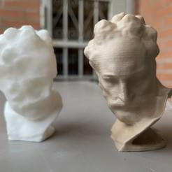 IMG_0055.jpeg Download STL file Michelangelo - Crepuscolo • 3D printable design, encke