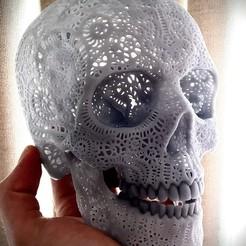 preview1.jpg Download STL file Filigree Anatomical Skull • 3D printer template, Droppingformdesigns