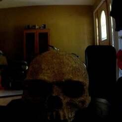 photo.jpg Télécharger fichier STL gratuit Première numérisation - Crâne • Objet imprimable en 3D, nickdisney