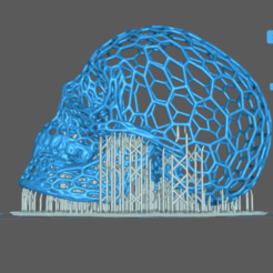 skull voronoi 2 support .png Download STL file Voronoi Skull 3D print model • Model to 3D print, Giadadilu