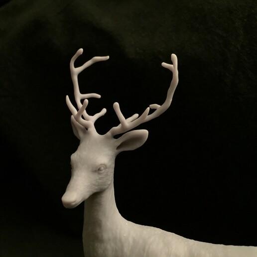 IMG_3378.JPG Télécharger fichier STL Chevreuil avec bois • Modèle à imprimer en 3D, SoulKim3D
