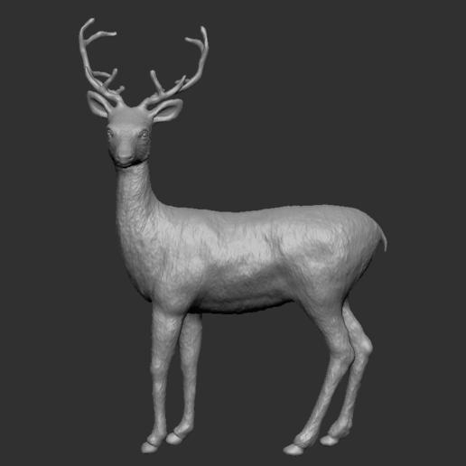 Screen Shot 2020-12-25 at 10.41.44 AM.png Télécharger fichier STL Chevreuil avec bois • Modèle à imprimer en 3D, SoulKim3D