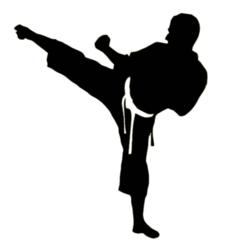 Taek.png Download STL file Taekwondo Wall Art decoration • 3D print object, bedyx