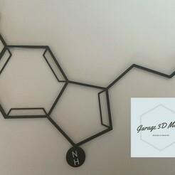 62DAC52A-430C-41C1-999D-AB5D2F7F00CB.JPEG Télécharger fichier 3MF gratuit Art mural sur la sérotonine • Objet pour impression 3D, Garage3dmaker