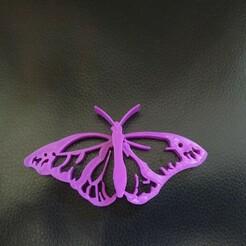 IMG_20210124_165003.jpg Download free STL file Butterfly • 3D printer model, xetras
