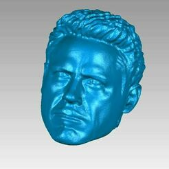 tony stark head view1.JPG Download OBJ file Tony Stark Ironman Head 3D Scan • 3D print design, 3D-Scan-Art