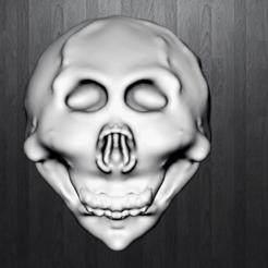 Defi1.png Télécharger fichier STL gratuit Crâne humain • Objet à imprimer en 3D, gab0drawn