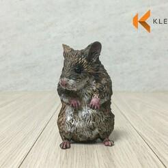 ham04.jpg Download STL file hamster 3d printed model • 3D print template, kleaflab