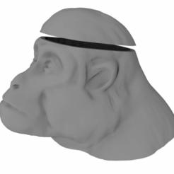 monkeybrain.png Télécharger fichier STL gratuit Un cerveau de singe sur la glace • Modèle pour impression 3D, Krest