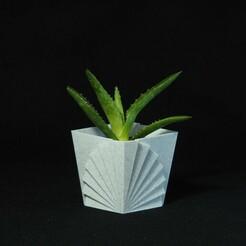 P1172053.JPG Download free STL file Fan shape vase • 3D printer model, PSMAKE