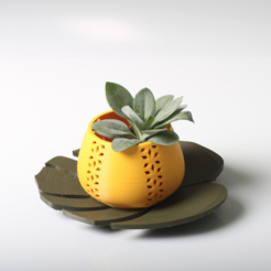 Download free 3D printer designs Jungle pot or candle holder + plate, dagomafr
