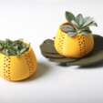 Modèle 3D gratuit Jungle pot ou bougeoir + plaque, dagomafr