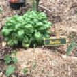 Free 3D printer designs Vegetable garden panels by Dagoma, dagomafr