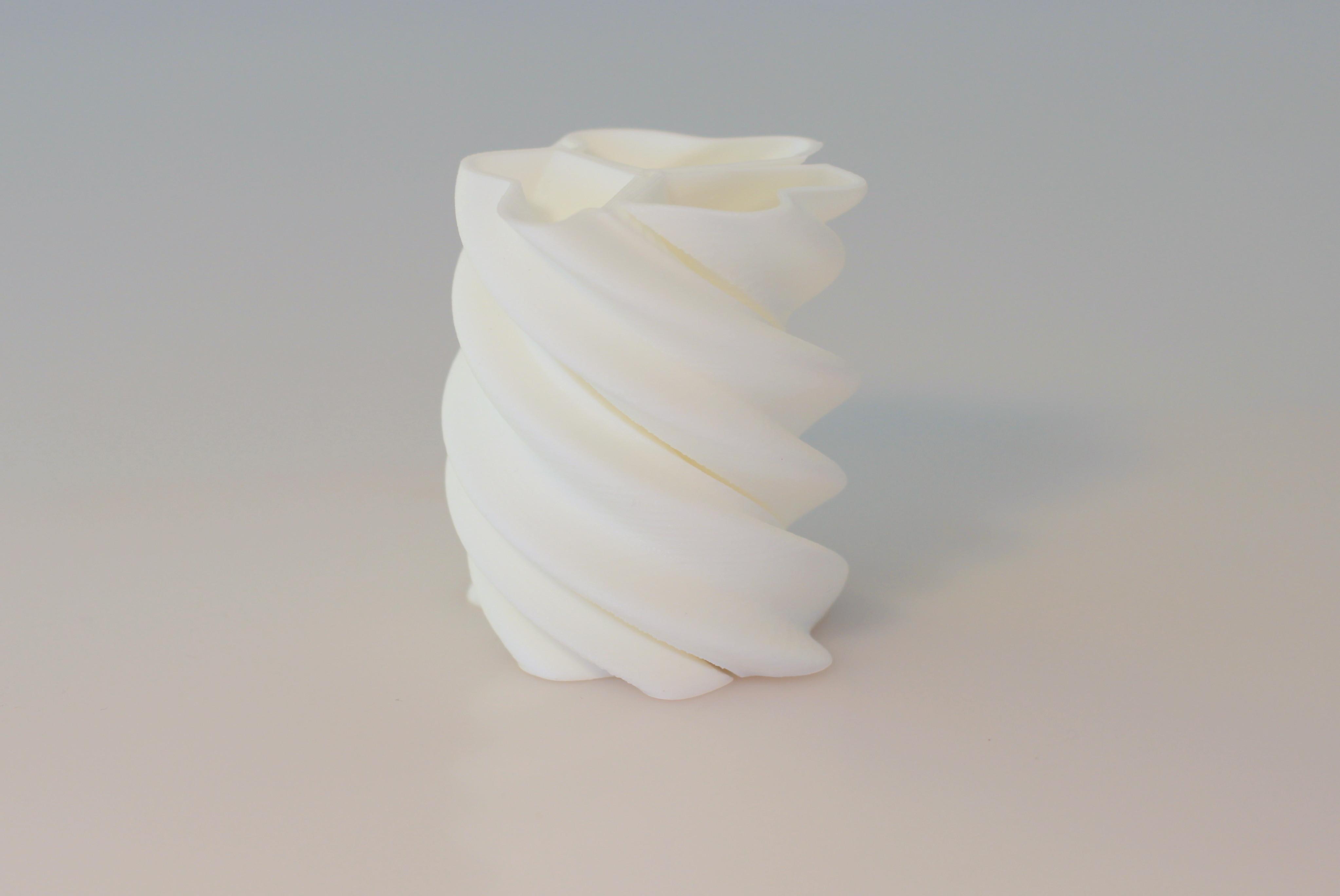 IMG_6602.JPG Télécharger fichier STL gratuit Twisted vase • Modèle à imprimer en 3D, BEEVERYCREATIVE