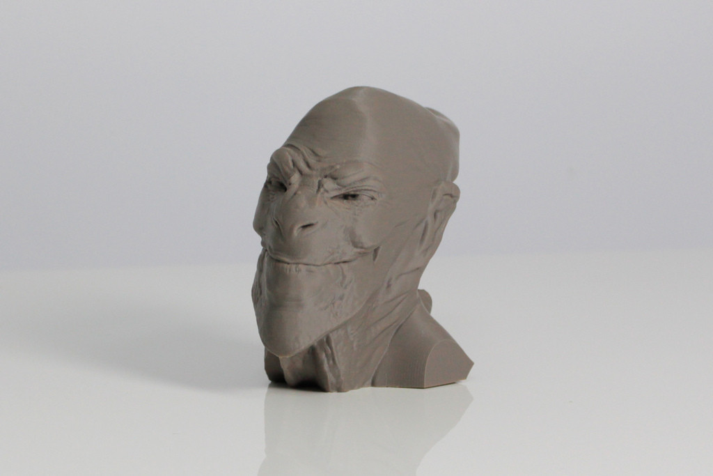 A1.jpg Download free STL file ACHFOS - Alien Creature Head From Outer Space • Template to 3D print, Sculptor