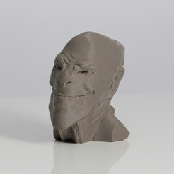Free 3D print files ACHFOS - Alien Creature Head From Outer Space, Sculptor